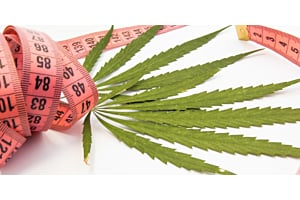 Cannabis and Weight Loss: The Facts