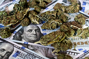 Feeling Frugal? Here's How to Make Your Cannabis Cash Go Further
