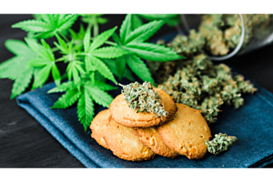 Cannabis Edible Acceleration Ideas for the Impatient