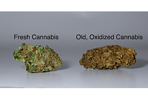 How to Differentiate Between the Three Grades of Buds