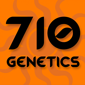710 Genetics Seedbank Tropical Berry Feminised