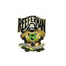 Reeferman Seeds Black Seed Regular Seeds