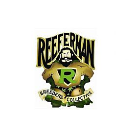 Reeferman Seeds Cherry Haze Regular Seeds