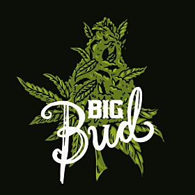 Big Bud Fast