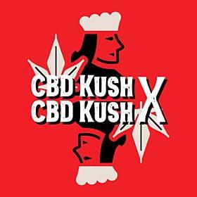 CBD Kush x CBD Kush