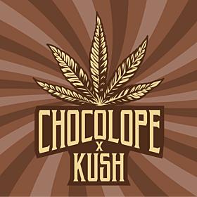 Chocolope x Kush