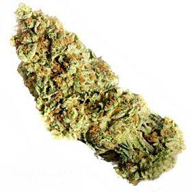 Dr Greenthumb's Em-Dog Bud