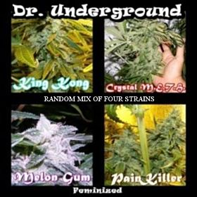 Dr Underground Killer Mix 4