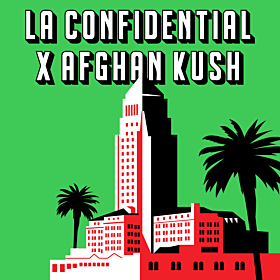 LA Confidential x Afghan Kush