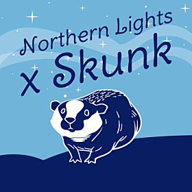 Skunk x Northern Lights