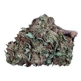 Big Head Seeds Skywalka Ghost Kush Feminized Seeds