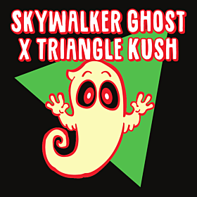 Skywalker Ghost x Triangle Kush