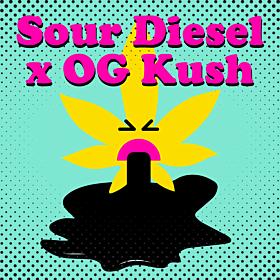 Sour Diesel x OG Kush
