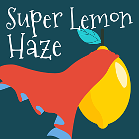 CBD Super Lemon Haze (1:1)