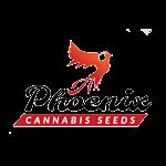 Phoenix Seeds