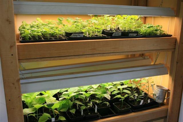 How to make your own grow lights - Start to finish