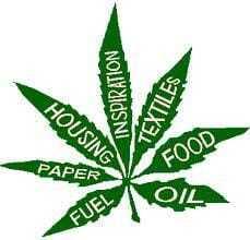 Fuel, Paper, Housing, Inspiration, Textiles, Food, Oil