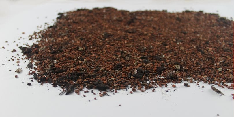 Which Soil Mixes Work Best?