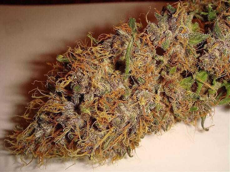 Master The Elements With Marijuana