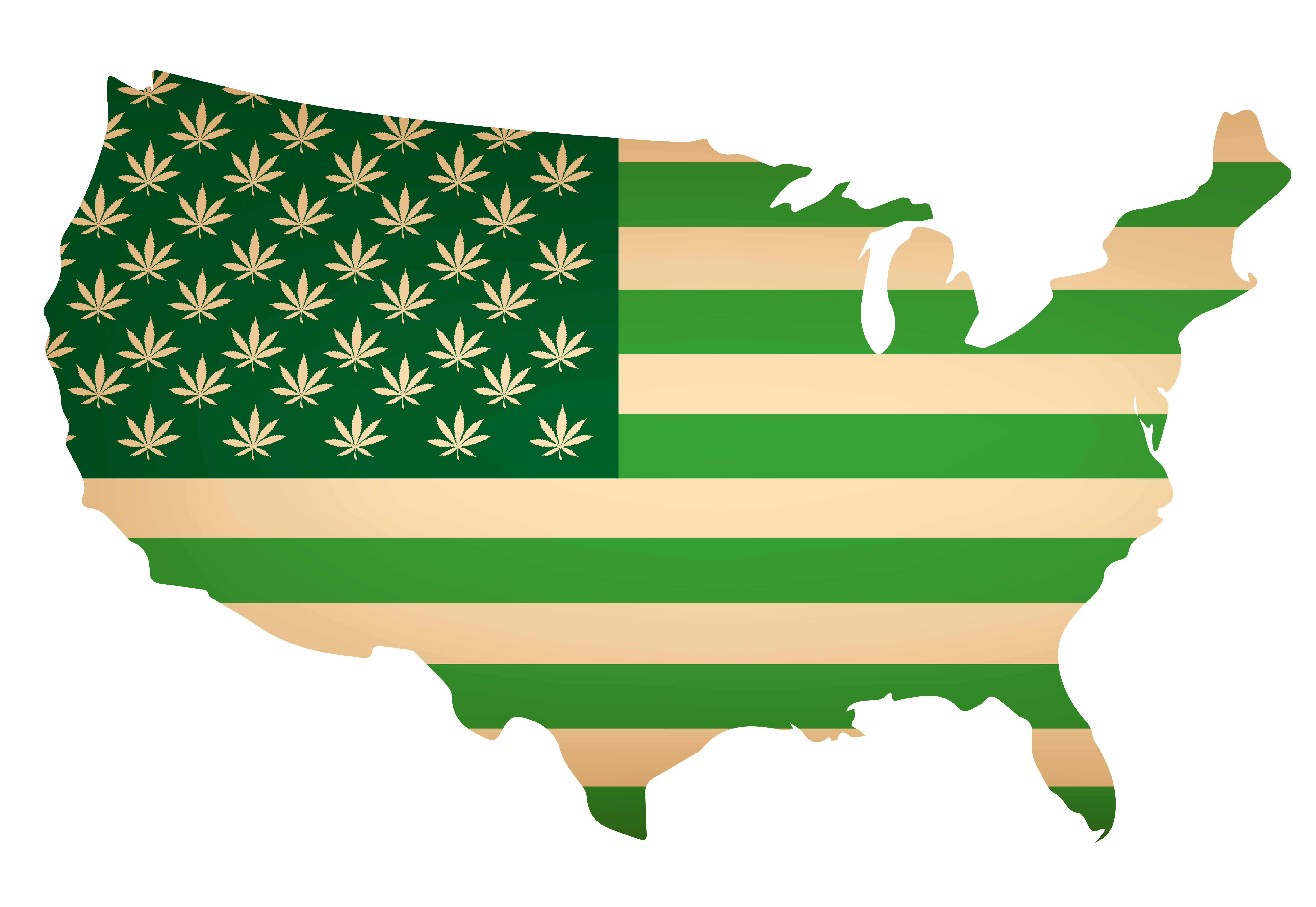 Nine Out of Ten Americans Support Cannabis Legalization