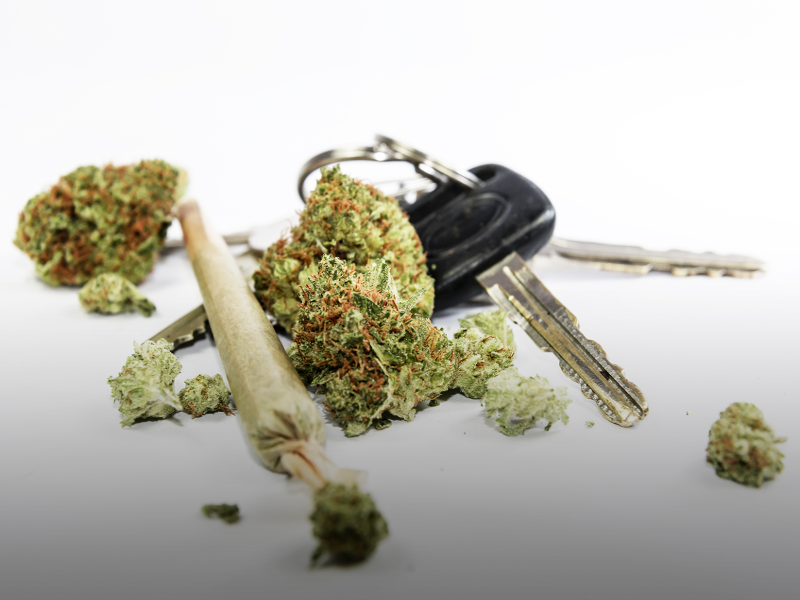 Cannabis and Driving: Where Do You Stand?