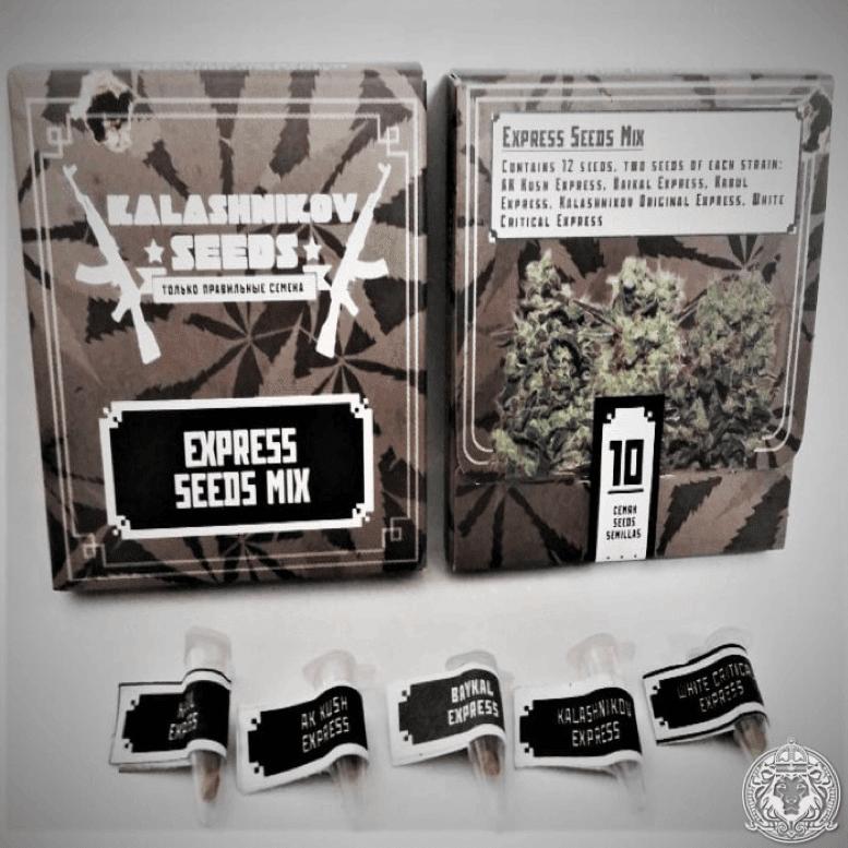 Kalashnikov Seeds - Kalashnikov Express Seeds mix