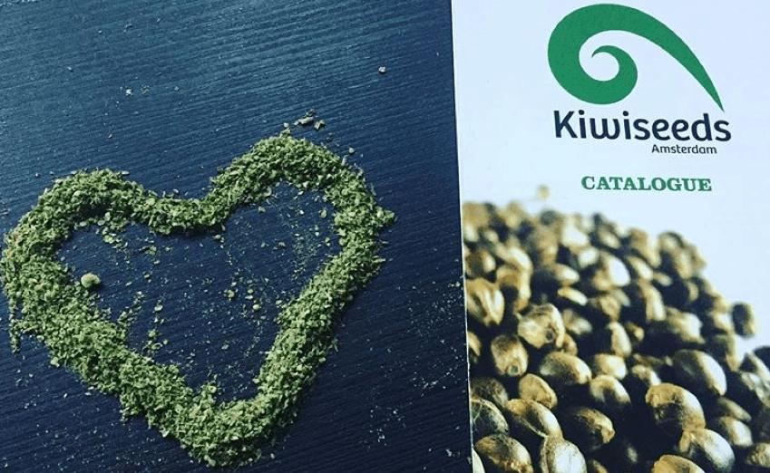 Kiwi Seeds catalog next to cannabis heart