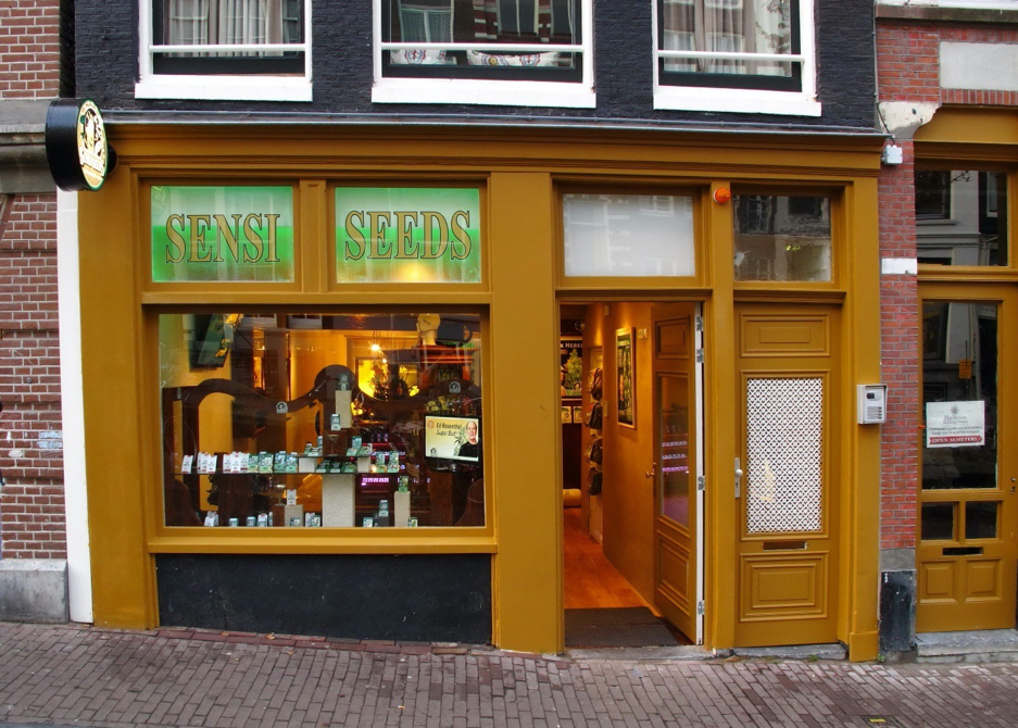 Sensi Seeds shop