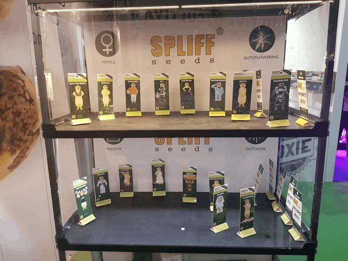 SPLIFF Seeds awards
