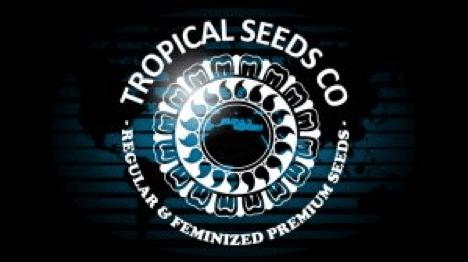 Tropical Seeds Company logo