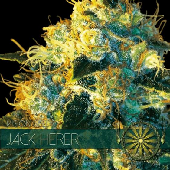 Vision Seeds - Jack Herer