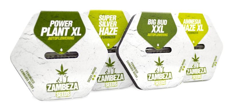 Zambeza Seeds Collection